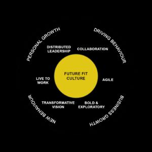 Future Fit Culture Framework